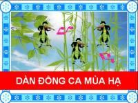 1533522546-hop-am-dan-dong-ca-mua-ha.jpg