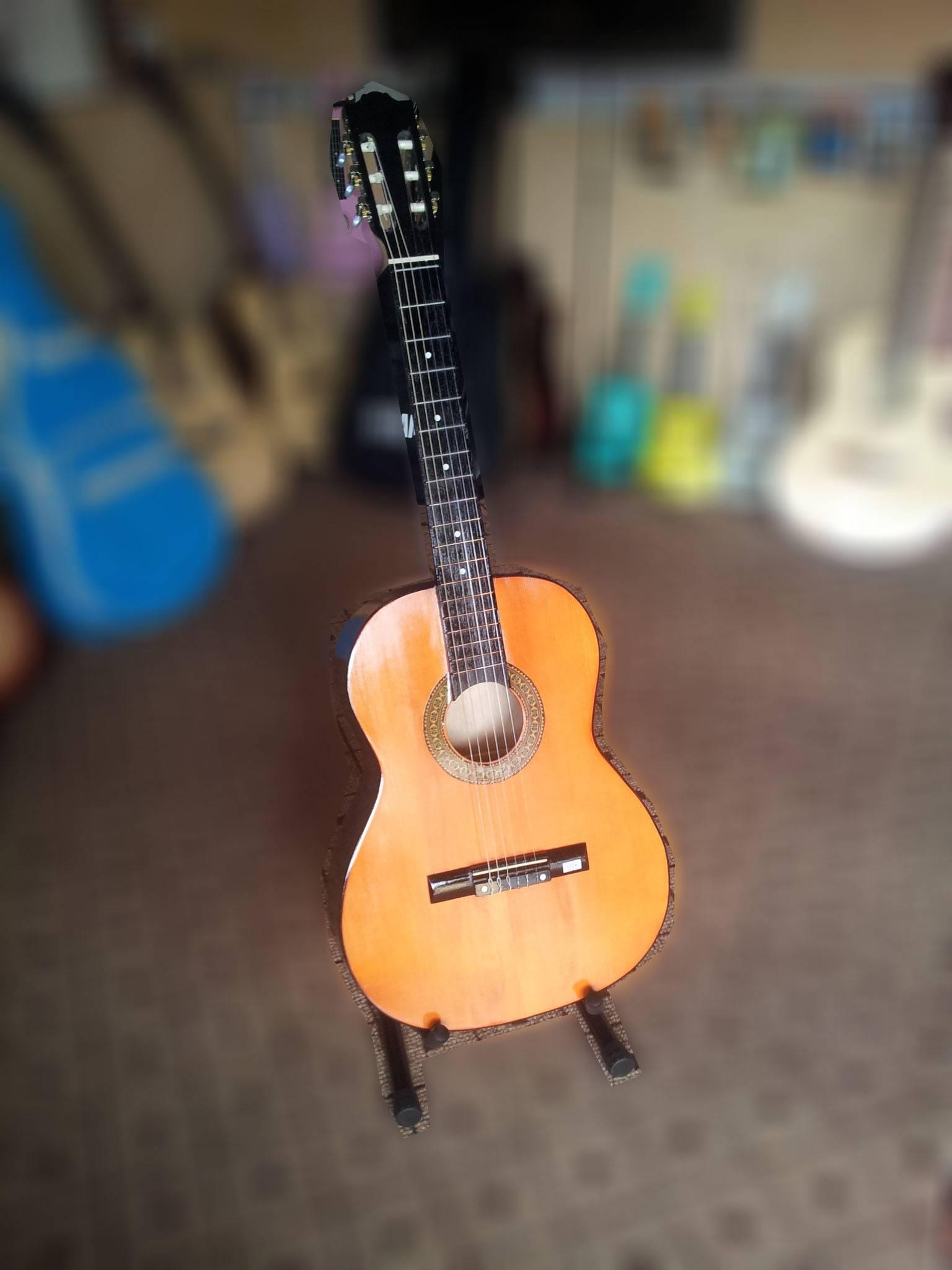 dan-guitar-classic-GC102