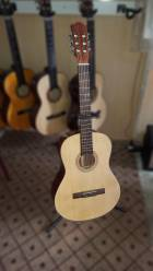 dan-guitar-classic-gc105